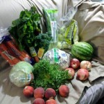 Organic Basket by Janette M