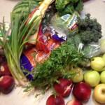 Organic Basket Lisa Y