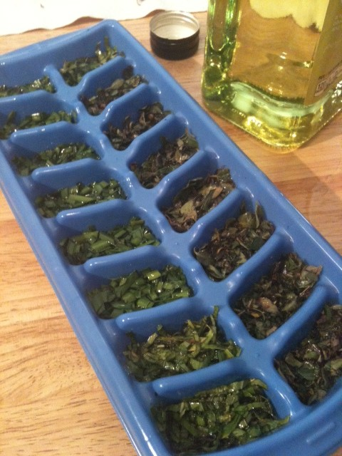 Fresh-Frozen Herbs in Olive Oil