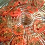 tomatochips1
