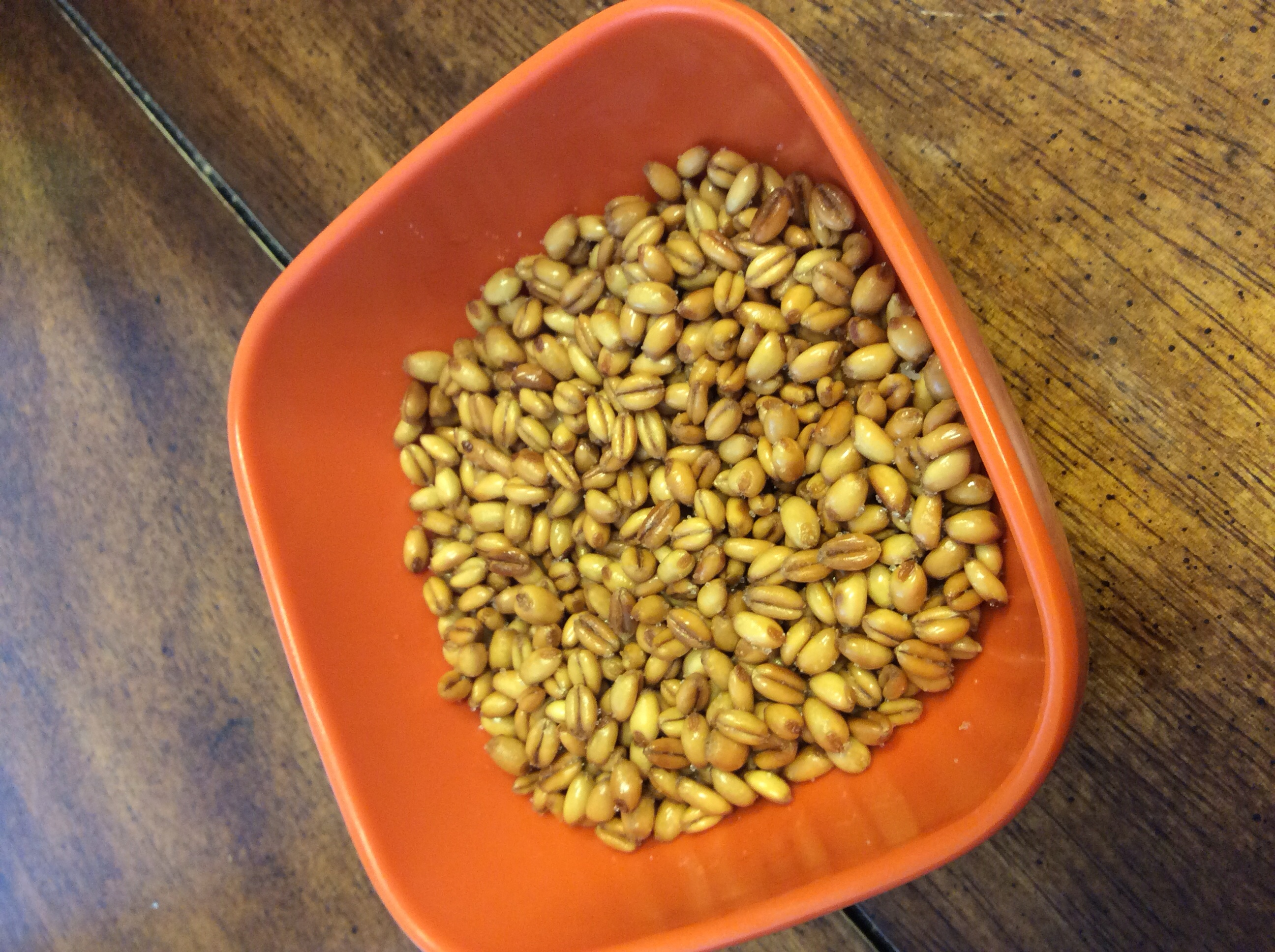 Savory Wheat Berry Snacks