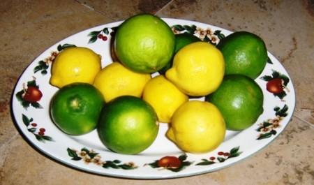 lemons and limes 008